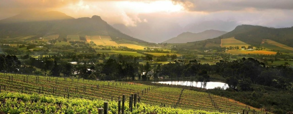 South Africa – Cape Winelands